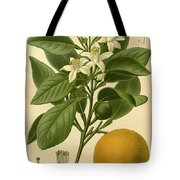 Sweet Orange Tote Bag by Philip Ralley