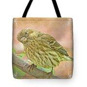 Sweet Pose Female Housefinch Tote Bag