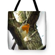 Sweet Robin Tote Bag