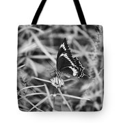 Sweet Seduction Black And White Tote Bag