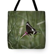Sweet Seduction Tote Bag