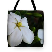 Sweet Smell Of Gardenias  Tote Bag