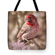 Sweet Songbird Tote Bag
