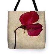 Sweet Textures Tote Bag