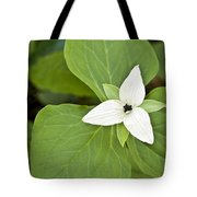 Sweet White Trillium Tote Bag