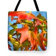 Sweetgum Leaves In Autumn Tote Bag
