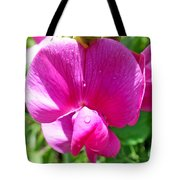 Sweetpea Flower Upclose Tote Bag