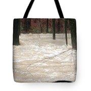 Swift Waters Tote Bag