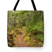 Swim Lake Trail Tote Bag