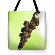 Swinging To And Fro... Tote Bag