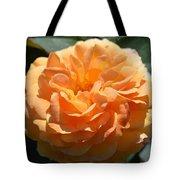 Swirling Peach Rose Tote Bag