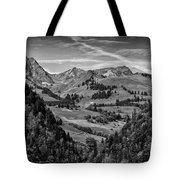Swiss Valley Bw Tote Bag