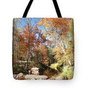 Sycamore And Cottonwood Trees Along The East Verde River Tote Bag