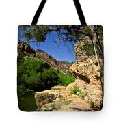 Sycamore Canyon Tote Bag
