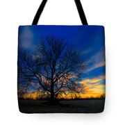 Sycamore Sunset Tote Bag