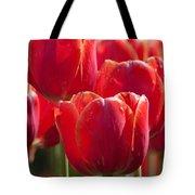 Symbolic Tulips Tote Bag