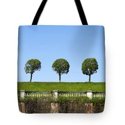 Symmetric Trees Over Old Fence Tote Bag