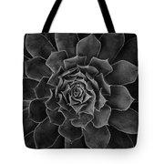 Symmetrical Succulent Tote Bag