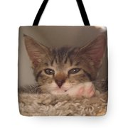 Symphony Keeping Watch Tote Bag