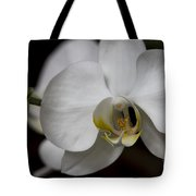Symphony White Orchid Tote Bag