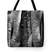 Ta Prohm Roots And Stone 04 Tote Bag