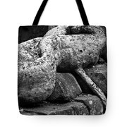 Ta Prohm Roots And Stone 06 Tote Bag