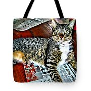 Tabby Cat On Newspaper - Catching Up On The News Tote Bag