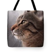 Tabby Cat Painting Tote Bag