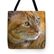 Tabby Cat Portrait Tote Bag