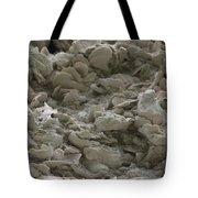 Tabby Detail Tote Bag