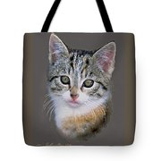 Tabby  Kitten An Original Painting For Sale Tote Bag