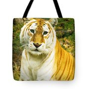 Tabby Tiger I Tote Bag
