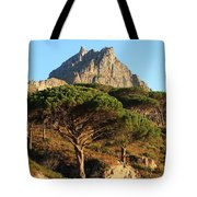 Table Mountain View Tote Bag