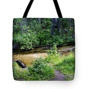 Tacoma Creek 1 Tote Bag