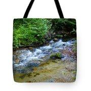Tacoma Creek 2 Tote Bag