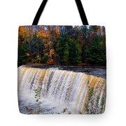 Tahquamenon Falls I Tote Bag