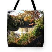 Tahquamenon Falls With My Iphone Tote Bag