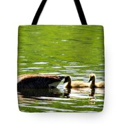 Tail Shade Tote Bag