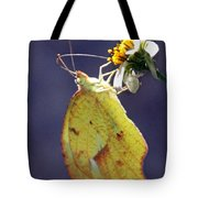 Tailed Orange Butterfly Tote Bag
