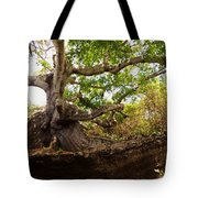 Tailspin Tote Bag