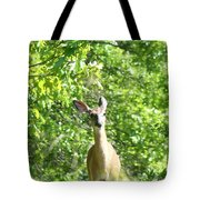Taken Aback  Tote Bag