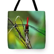 Taking A Bow Tote Bag