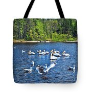 Taking Flight In Ontario Tote Bag