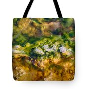 Taking The Beach Hot Springs Tote Bag