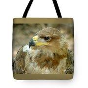 Tawny Eagle-11 Tote Bag
