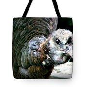 Talk Turkey Tote Bag
