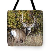 Tall And Handsome Tote Bag