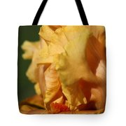 Tall Bearded Iris Named Penny Lane Tote Bag