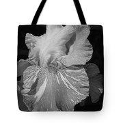Tall Bearded Iris Named Saharan Sun Tote Bag
