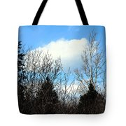 Tall Birch Tote Bag